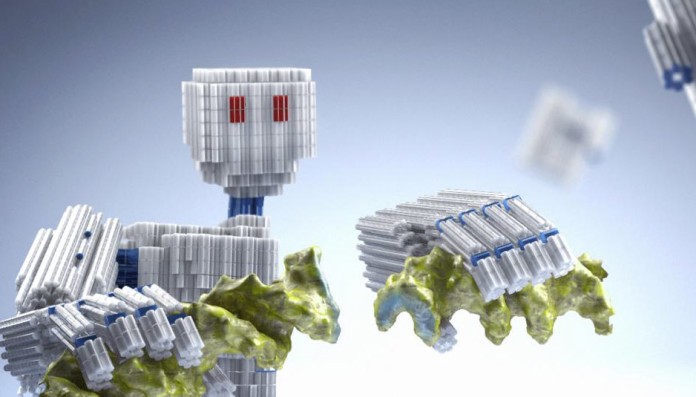 Autoassembled DNA nanorobot