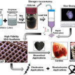 Graphene, 3D printing and scaffold process