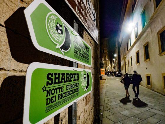 Sharper 2015, Perugia