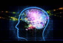 reti neurali