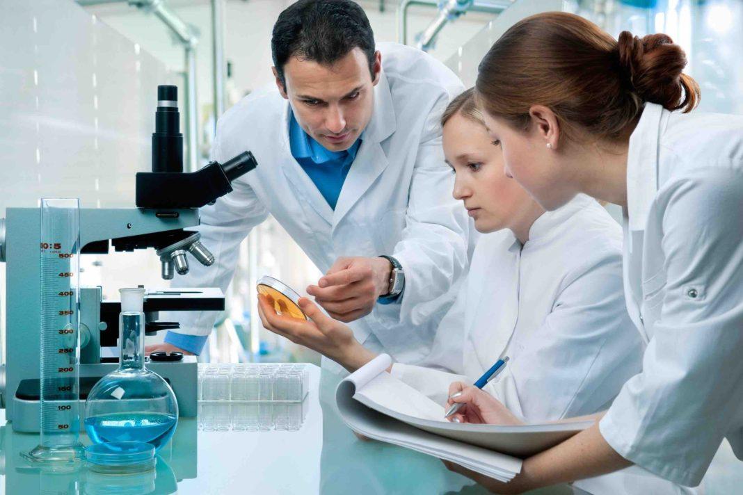 lavoro ingegneria biomedica