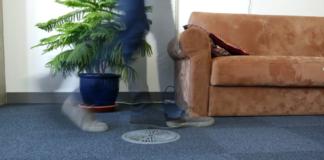 WiGait: le mura di casa che osservano la velocità del tuo cammino attraverso rete wireless