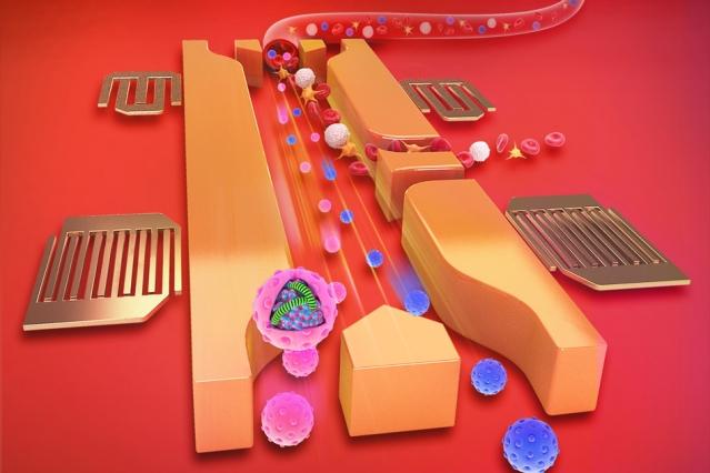 Analisi del sangue con onde sonore MIT