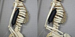 Soft materials: nuovi muscoli artificiali per i robot di domani