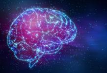 Il segnale sviluppato dal cervello