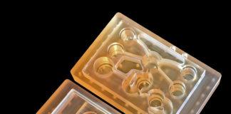 """""""Body on a chip"""": la tecnologia che può replicare le interazioni tra gli organi"""