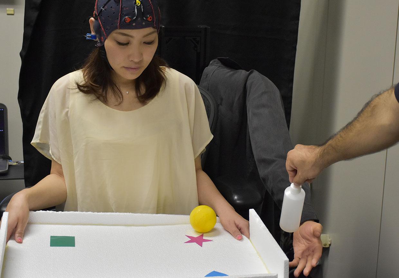 Multitasking braccio robotico