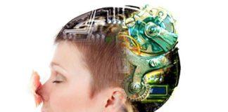 """Arriva TruffleBot: il naso elettronico che """"annusa"""" veramente"""