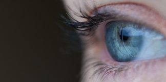 Una retina artificiale contro la maculopatia
