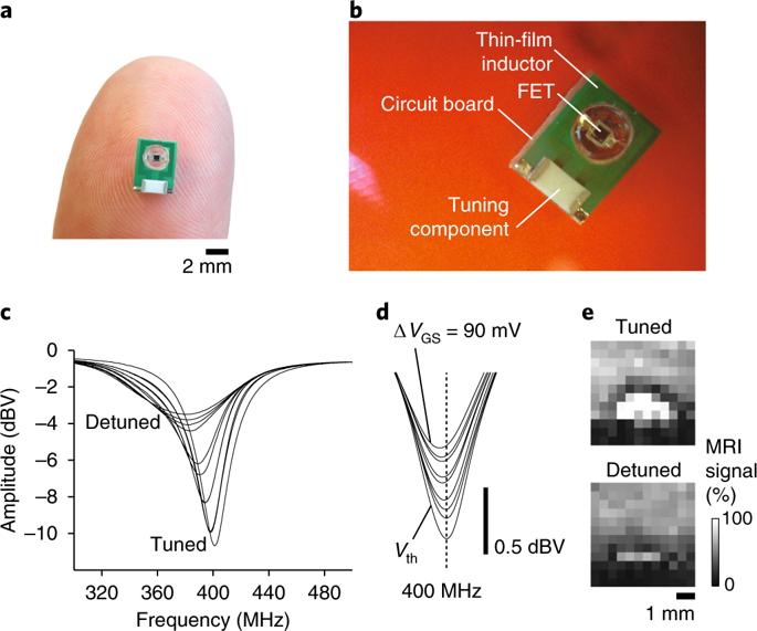 ImpACT: sensore MRI per monitorare l'attività elettrica del cervello