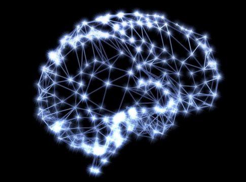 Blue Brain Cell Atlas