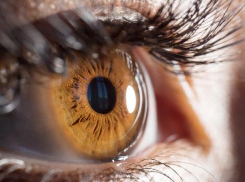 Ottenuta la prima cornea che prende forma da sola