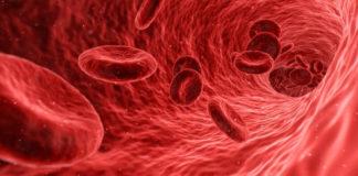 Microsfera magnetica per il monitoraggio non invasivo del flusso sanguigno