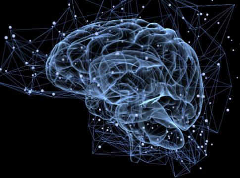 Stentrode: la prima interfaccia neurale endovascolare