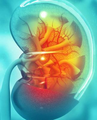Torino: asportato un rene in laparoscopia ad un paziente sveglio