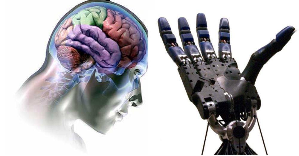 Neuralink: la prima interfaccia cervello-macchina è vicina