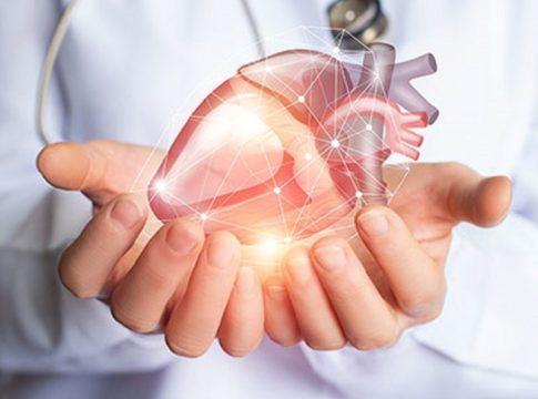 Nuovo biomateriale riproduce le proprietà meccaniche del cuore umano