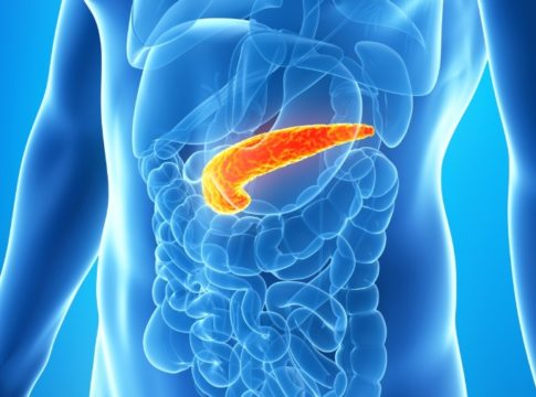 Posizione pancreas nel corpo umano