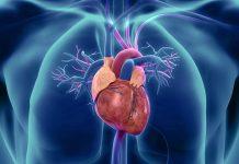 V-LAP: il microchip per il monitoraggio cardiaco arriva anche in Italia