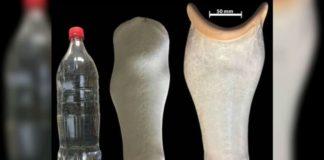 Protesi d'arto inferiore: l'ultima trasformazione della plastica riciclata