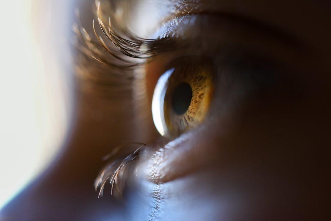 Un occhio bionico per tornare a vedere: nuovi passi avanti