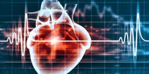 OPTIMA: la mappa virtuale per salvare il cuore da fibrillazione atriale