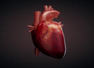 Premiata in Europa la protesi aortica contro l'aneurisma made in Italy