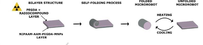 Fabbricazione micro-robot