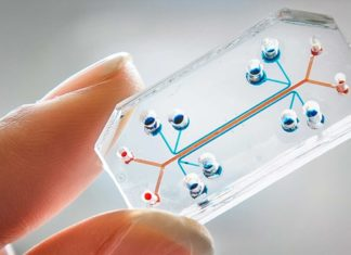 Organs-on-a-chip