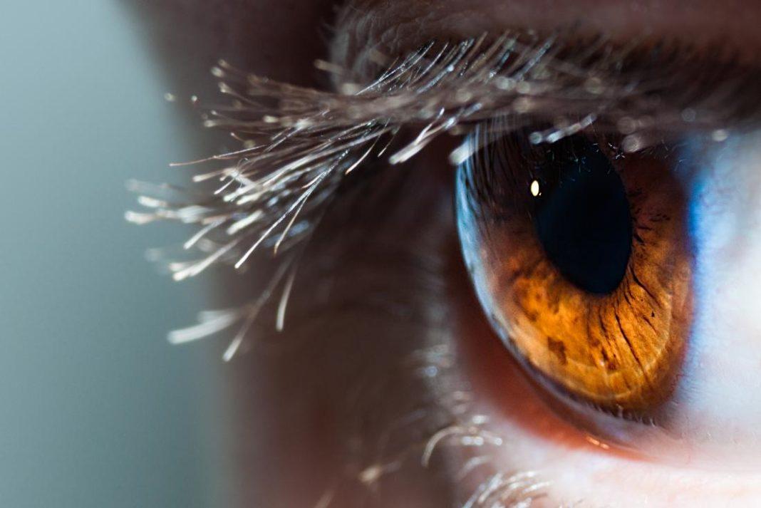 Per la prima volta la cornea è stata riparata con cellule staminali