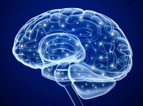 elettrodi cervello