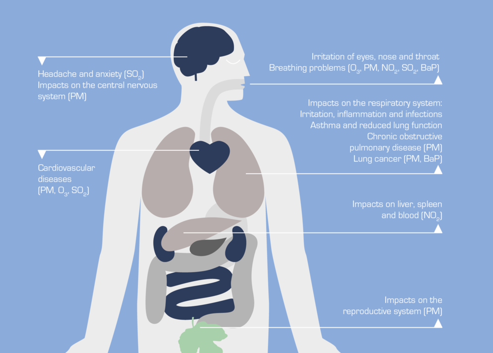 Impatto dell'inquinamento sulla salute