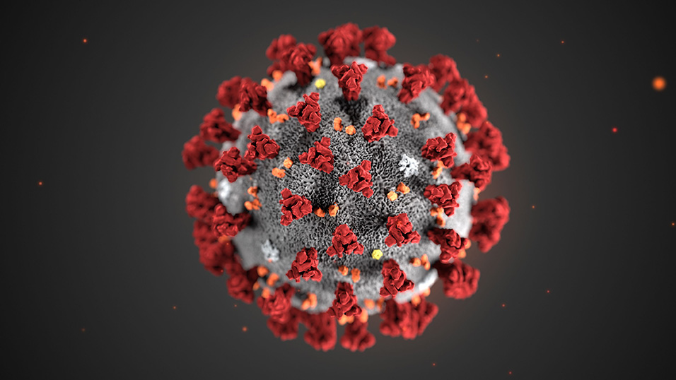 Coronavirus vie di trasmissioni