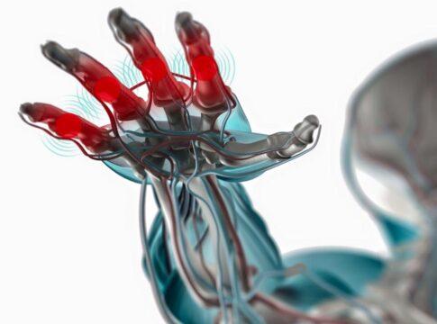 rigenerazione nervi danneggiati innesto biodegradabile