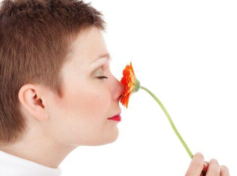 Il primo odore artificiale percepito dalle cellule del cervello