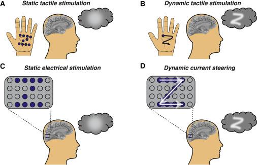 cecità vedere cervello elettrodi corteccia visiva stimolazione