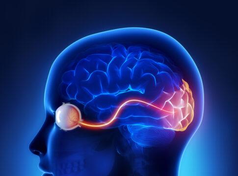Occhio non vede ma cervello si. Credits: occhioallaretina.it
