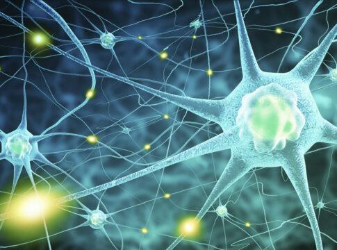 """Realizzato il primo modello di sinapsi artificiale con """"effetto memoria"""""""