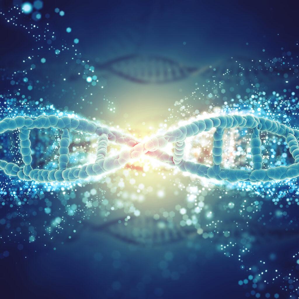 geni jolie rischi donne uomini
