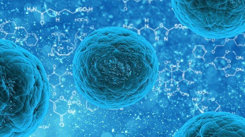 Bioprinting: la stampa 3D applicata alla medicina