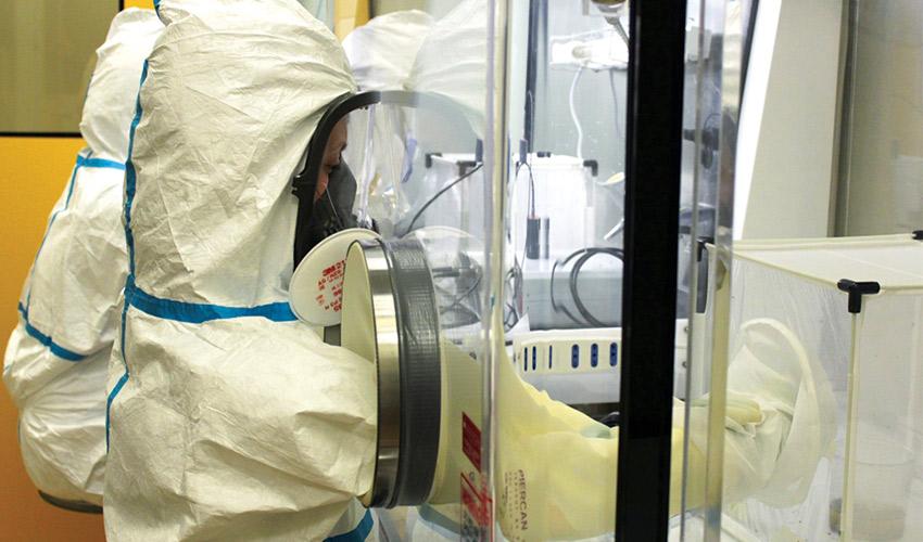 Studio zanzare e coronavirus