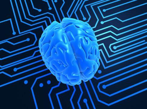 Il Cervello Artificiale: replicare in laboratorio il nostro organo più complesso