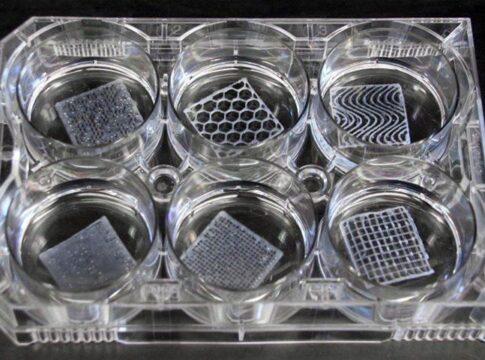 Scaffold 3D bioprinting