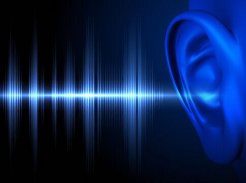 potenziali evocati udito ultimo senso prima di lasciarci morte EEG ERP