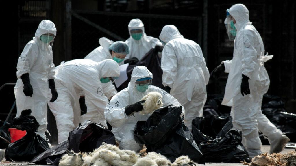 coronavirus complotti fantascienza scienza
