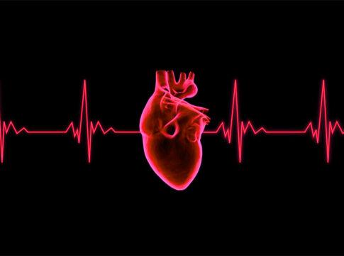 Storia del cuore artificiale, più di 50 anni d'innovazione