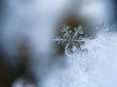 Il freddo è alle porte, ma perché alcuni lo soffrono più degli altri?