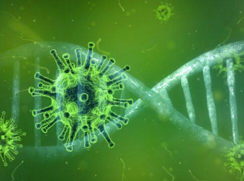 nuova variante coronavirus primo caso italia