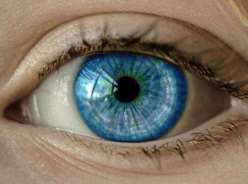 Prima retina artificiale bioibrida per il trattamento dell'AMD