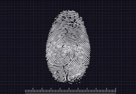 Il raro caso della famiglia senza impronte digitali. Cos'è l'adermatoglifia